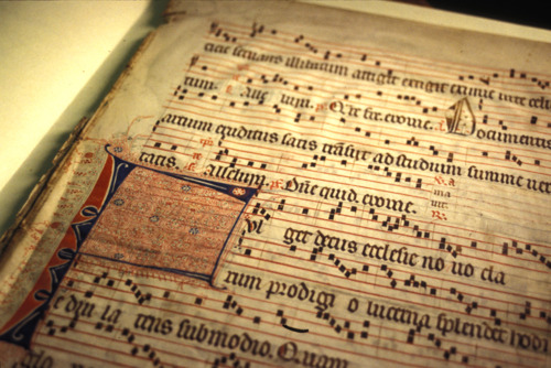 a history of medieval music experience Anciens étudiants du cimm et étudiants de medieval music besalu : frais  he  holds a historical performance degree from the mannes college of music (new .