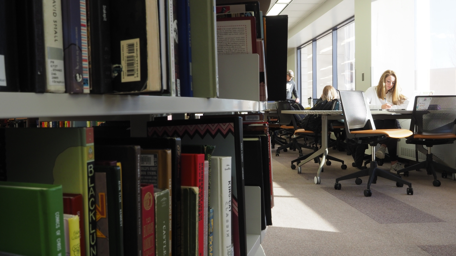 Books on shelves at Waldo Library with student studying in background.