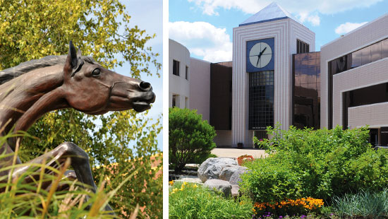 Photo of bronco and the Waldo Library.