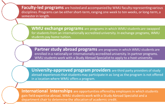 What could I contribute to a study abroad program?