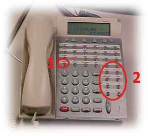photo of an analog DTERM telephone