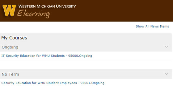 Elearning My Courses IT Security Education for WMU Students