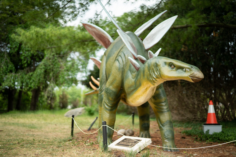 A stegosaurus statue.