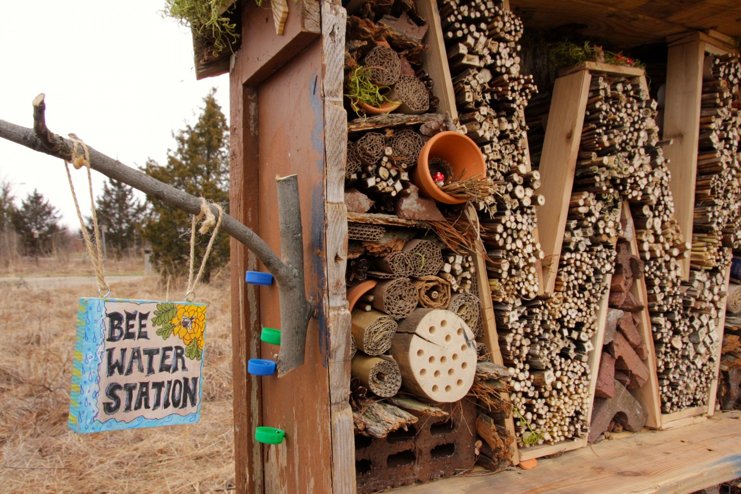 A close-up shot of a pollinator house created for bees.