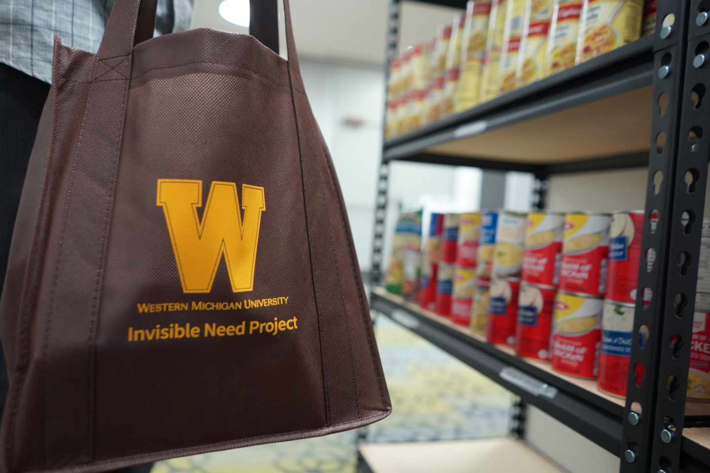 """A shopping bag that reads 'Invisible Need Project."""""""