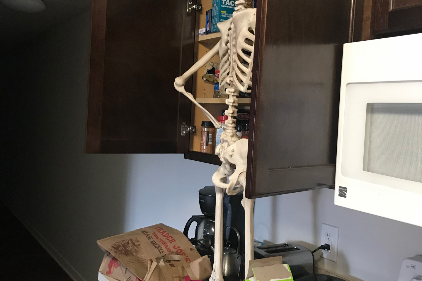 A skeleton looking for food in a kitchen cabinet.