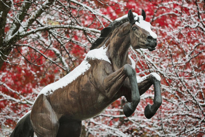 Photo of WMU Bronco statue with snow.
