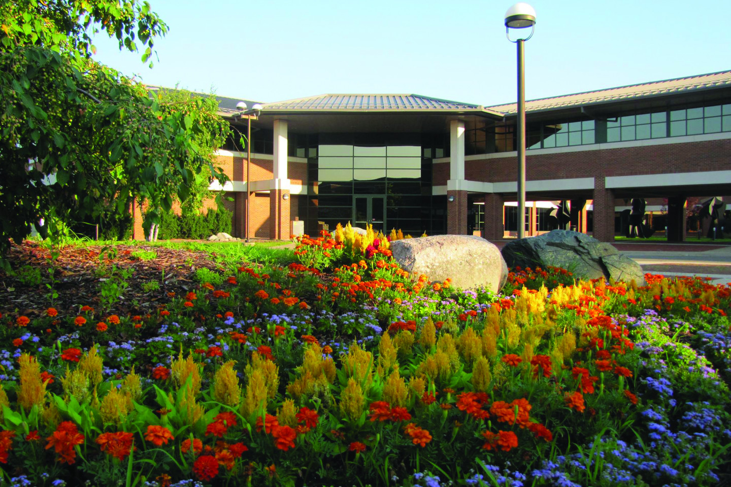 Photo of outside of Schneider Hall