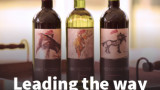 wine bottles with Leading the way headline