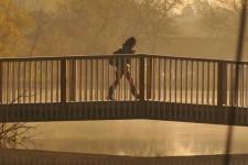 Photo of Goldworth Valley pedestrian bridge.