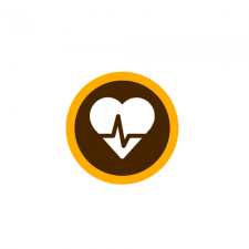 This is a decorative image of a heart with a heartbeat line symbolized over the top of it. The heart is in white on a brown circle with a thin gold circular band around it in the school colors of W M U.