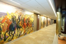 horse murals line the hallway at wmu-grand rapids, beltline.