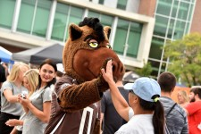 Photo of Buster Bronco at WMU Bronco Bash 2016.