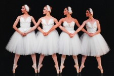 Photo of four ballerinas dressed in white dresses with white hair pieces with their arms crossed over holding hands.