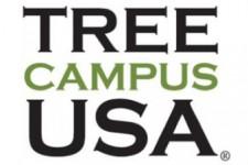 Logo, Tree Campus USA Celebrating 10 Years