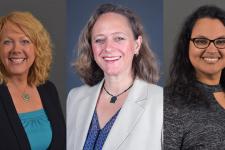 Photos of Drs. Ann Chapleau, Jennifer Harrison and Bridget Weller.