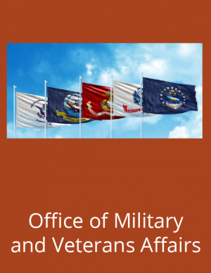 Pictured are military flags.
