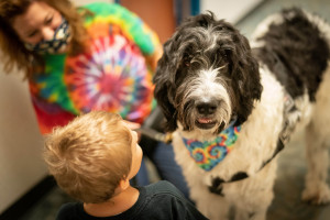 Incorporating pet therapy with a child assessment