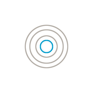 Icon: bullseye