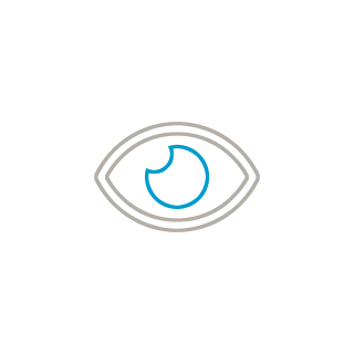 Icon: eye