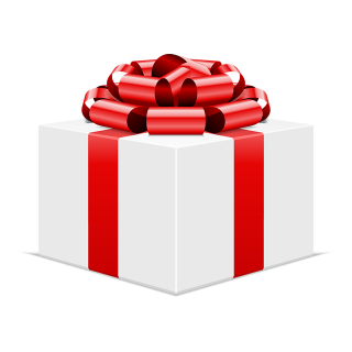 icon: christmas gift box