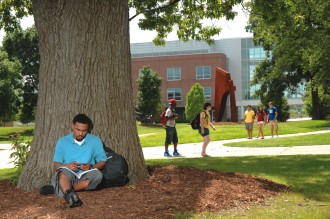 student beside tree on campus
