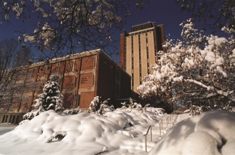View of Sprau Tower surrounded by snow-covered trees.