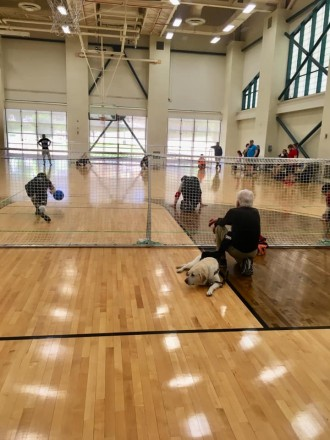 Bob Brauker crouches in a gym to watch goalball alongside his guide dog.