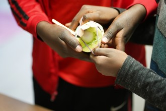 Students hold an egg that they have wrapped in a protective coating of foam and popsicle sticks.