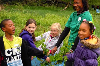 Photo of children pulling up invasive plants.