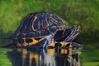 Photo of a painting of a turtle.