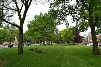 Photo of Kalamazoo's Bronson Park.