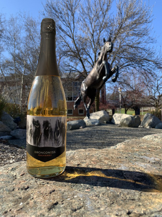 A Bronconess wine bottle resting on a rock in front of the Bronco statue.