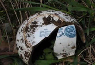 A white, shattered, ceramic bowl with blue print lying in the grass