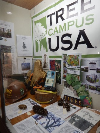 Tree Campus USA display