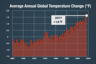Global temperature change graph.