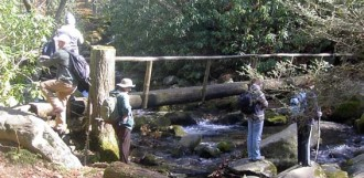 Students crossing a bridge over a river in a forest.