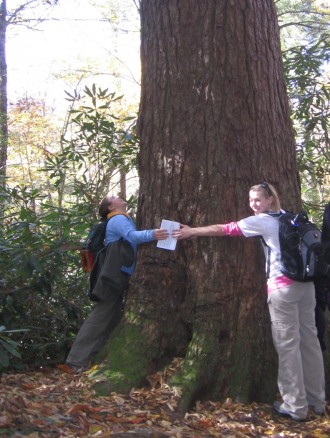 Students measuring a large tree by wrapping their arms around it.