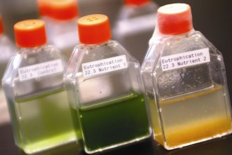 a photo of a three bottles with different test liquids in a lab.
