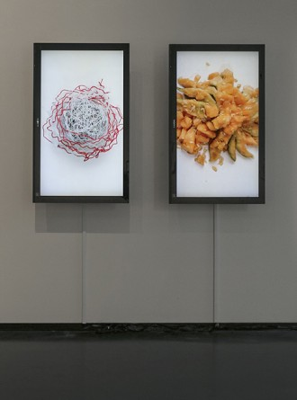 Ryan Lewis. Everted Sanctuaries II, digital video diptych, 2014.