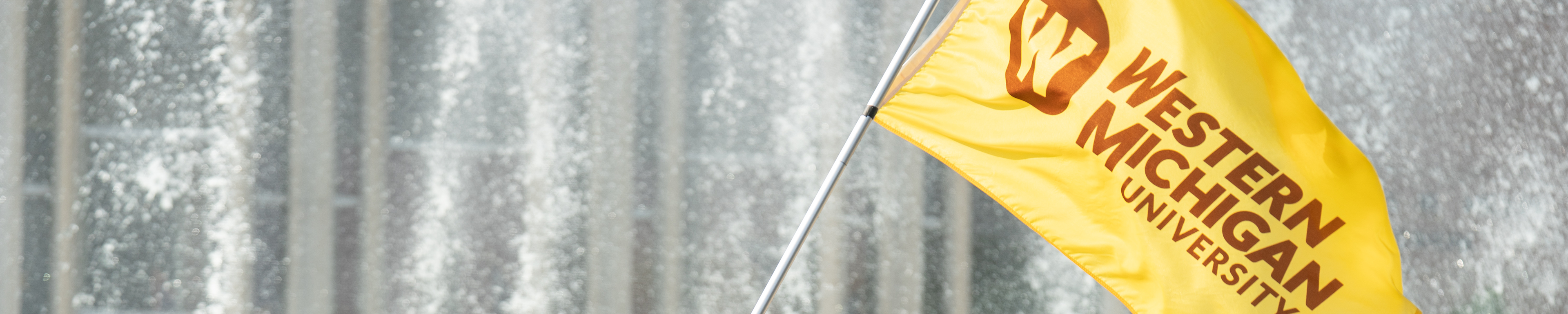 Page banner: WMU flag in front of the water fountain