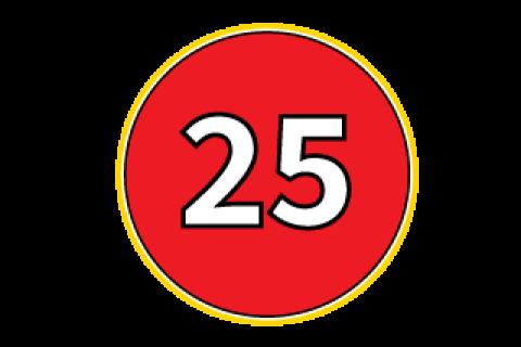 Route 25 icon