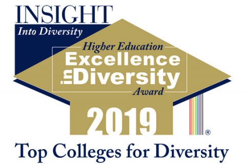 Logo of the Insight Into Diversity award