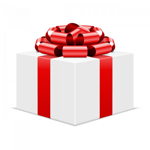 icon: christmas gift box