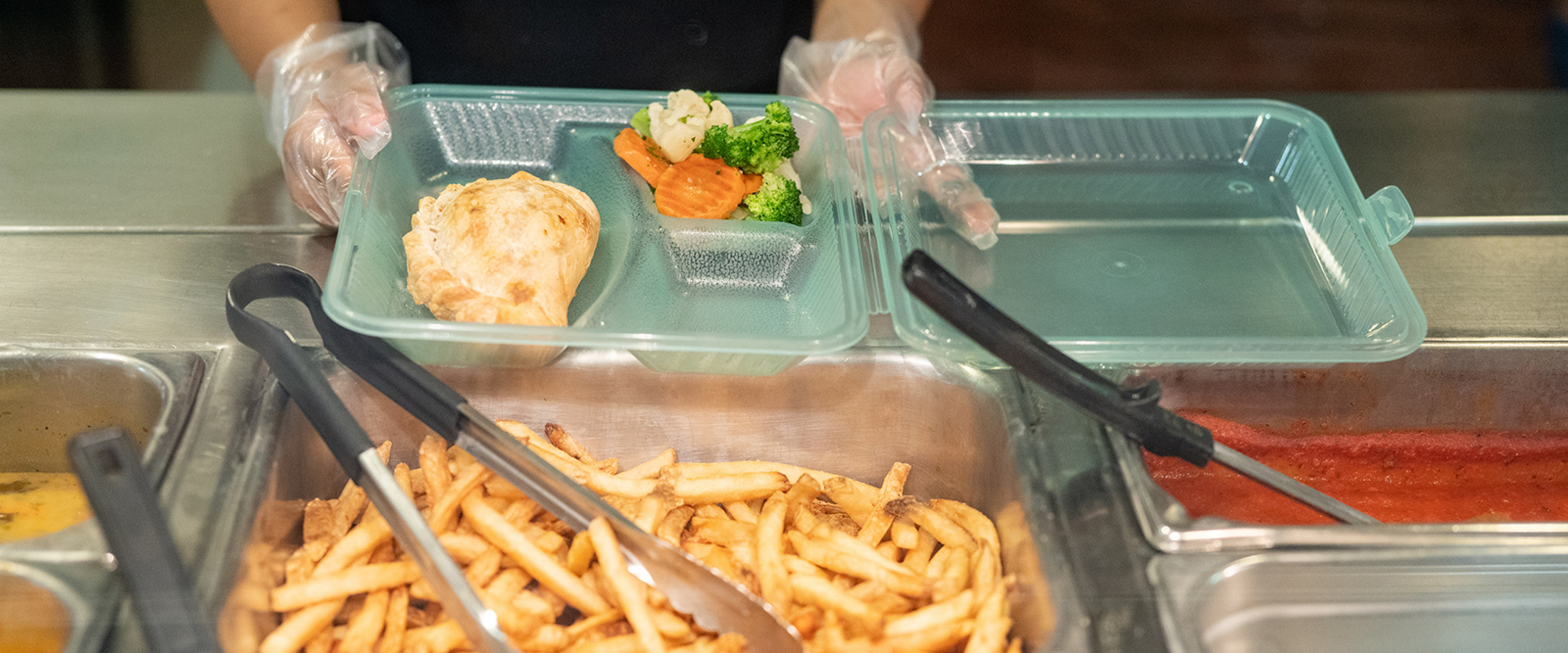 Reusable Container with chicken, veggies and french fries