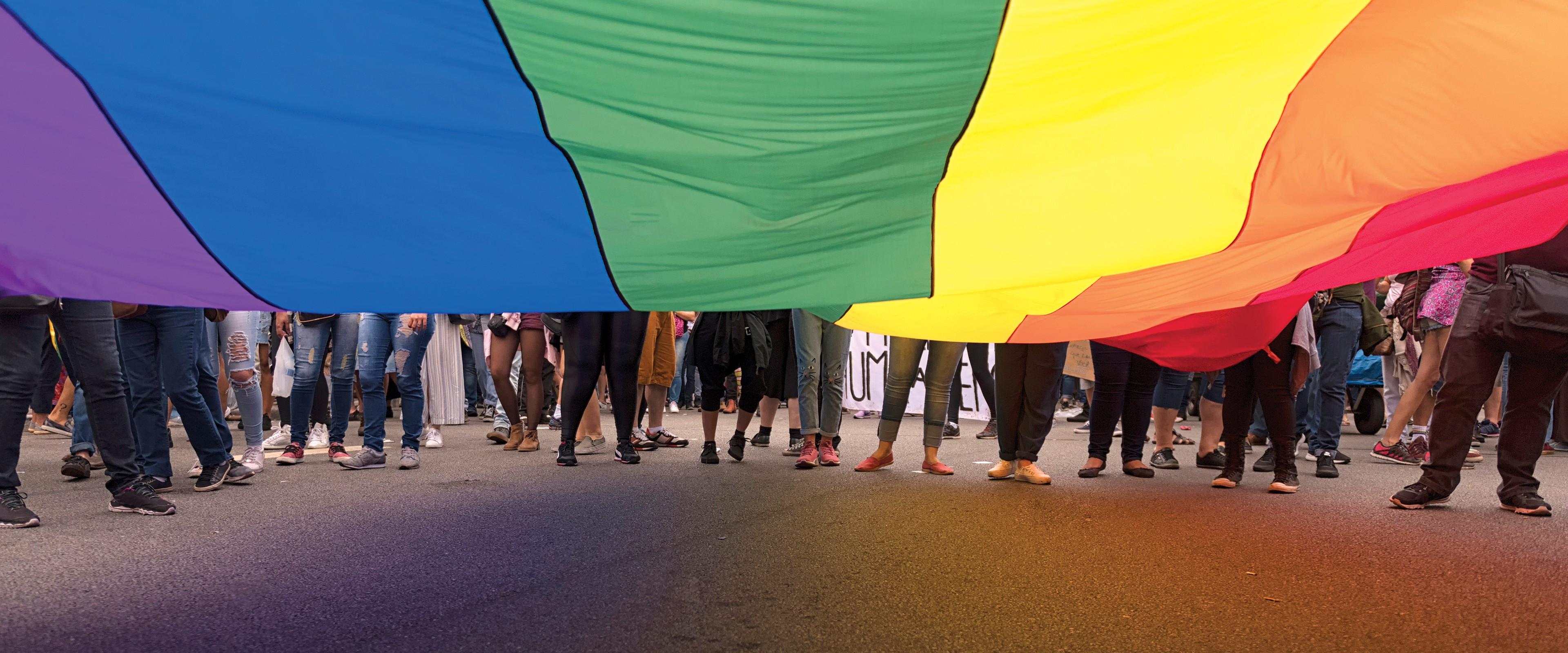 A rainbow LGBT pride flag.