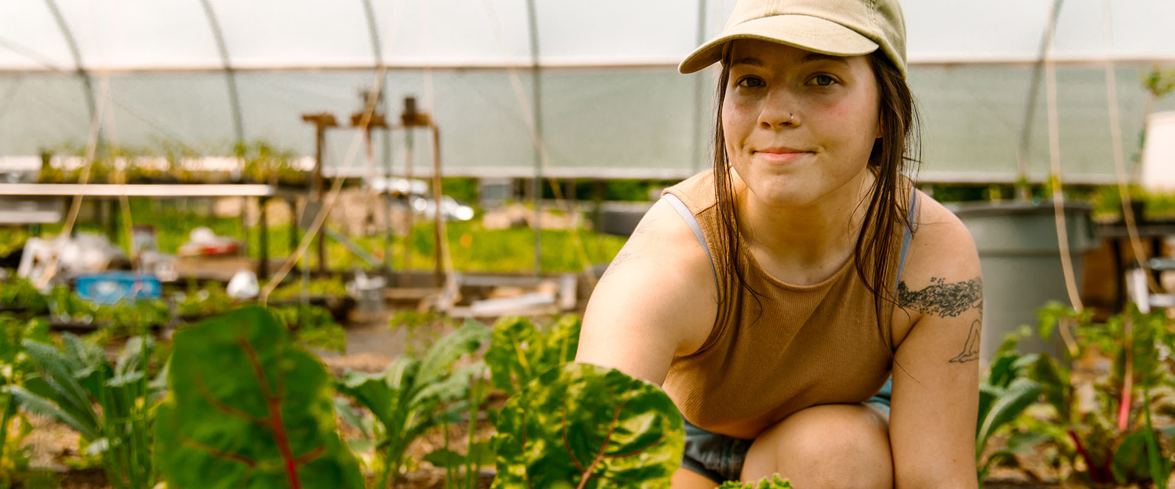 A WMU student tends to plants in a greenhouse