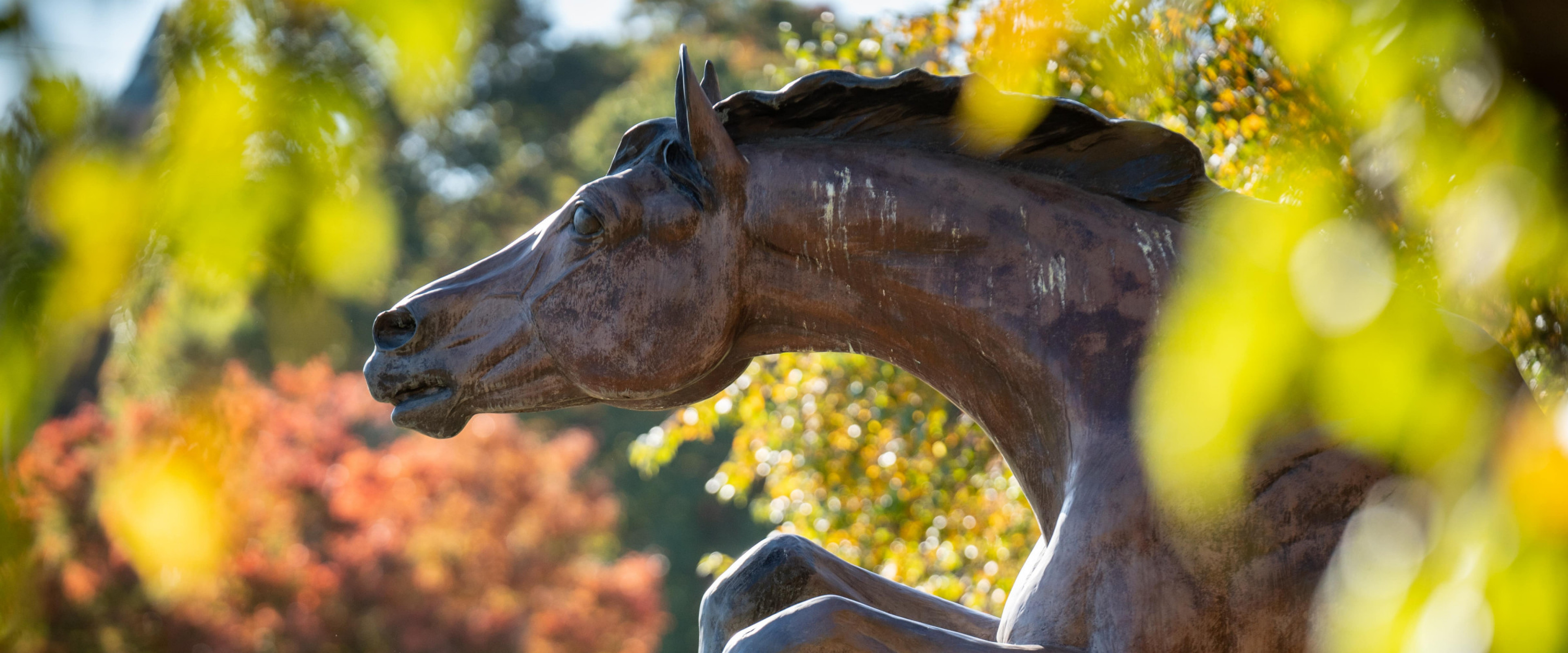 Bronco statue