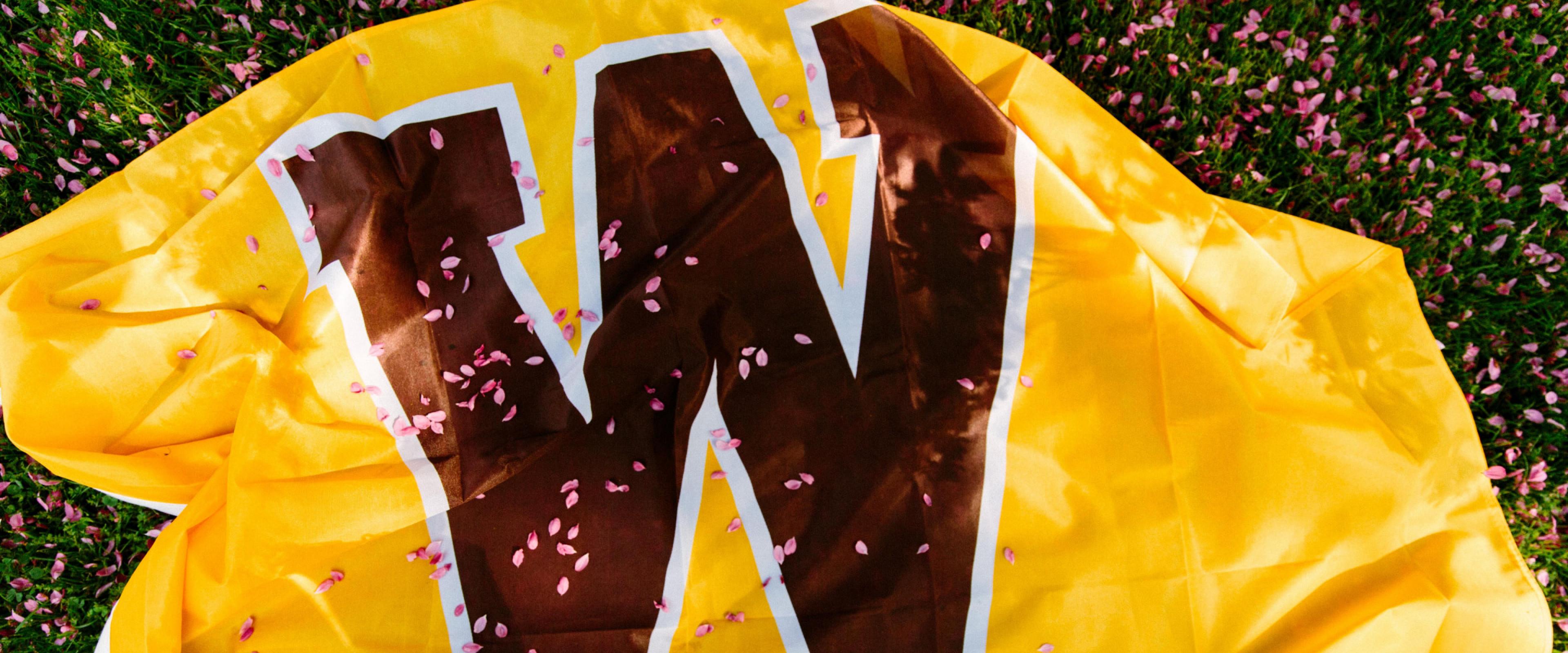 "Western ""W"" flag on ground"