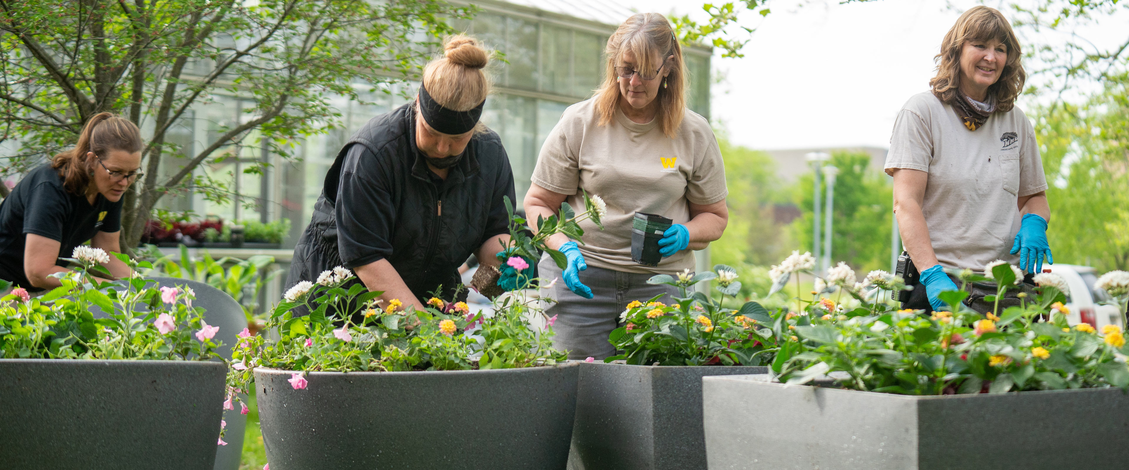 Four women planting flowers in planters.